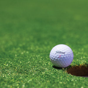 Synthetic Artificial Putting Green Grass Turf